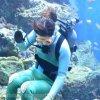 仙台うみの杜水族館、水槽お掃除 #s_uminomori https://t.co/IgQPP0ktcy